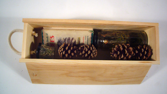 walk in pine wood box